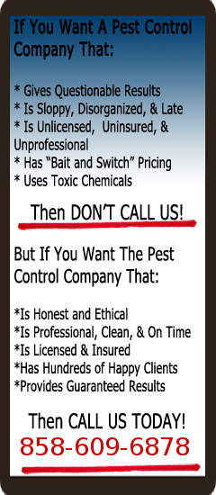 Weston Pest Control Sidebar